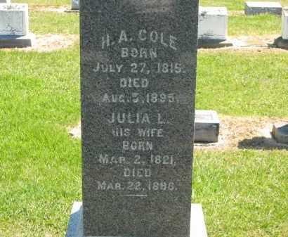 COLE, JULIA L. - Lorain County, Ohio | JULIA L. COLE - Ohio Gravestone Photos