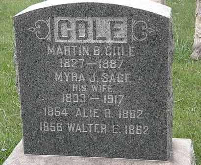 COLE, WALTER E. - Lorain County, Ohio | WALTER E. COLE - Ohio Gravestone Photos