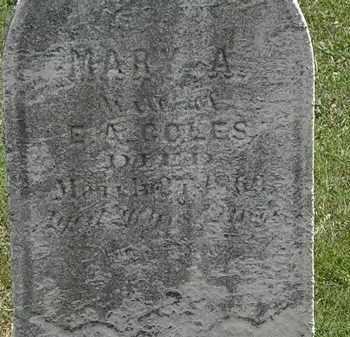 COLES, MARY A. - Lorain County, Ohio | MARY A. COLES - Ohio Gravestone Photos