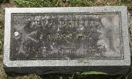 COMSTOCK, CELIA PHILURA - Lorain County, Ohio   CELIA PHILURA COMSTOCK - Ohio Gravestone Photos