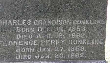 CONKLING, CHARLES GRANDISON - Lorain County, Ohio   CHARLES GRANDISON CONKLING - Ohio Gravestone Photos