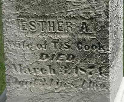 COOK, ESTHER A. - Lorain County, Ohio | ESTHER A. COOK - Ohio Gravestone Photos