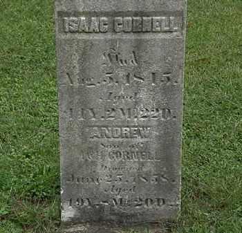 CORNELL, H. - Lorain County, Ohio | H. CORNELL - Ohio Gravestone Photos