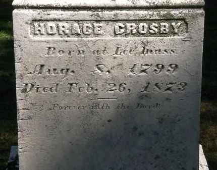 CROSBY, HORACE - Lorain County, Ohio | HORACE CROSBY - Ohio Gravestone Photos