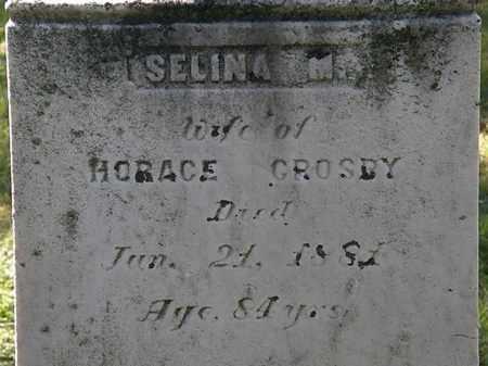 CROSBY, SELINA M. - Lorain County, Ohio   SELINA M. CROSBY - Ohio Gravestone Photos