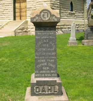 DAHL, ANDREAS - Lorain County, Ohio | ANDREAS DAHL - Ohio Gravestone Photos
