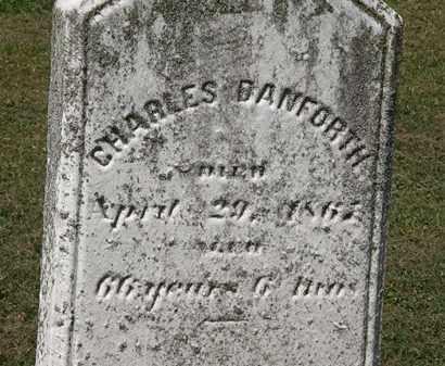 DANFORTH, CHARLES - Lorain County, Ohio | CHARLES DANFORTH - Ohio Gravestone Photos