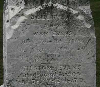 EVANS, ALBERT W. - Lorain County, Ohio | ALBERT W. EVANS - Ohio Gravestone Photos