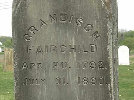 FAIRCHILD, GRADISON - Lorain County, Ohio | GRADISON FAIRCHILD - Ohio Gravestone Photos
