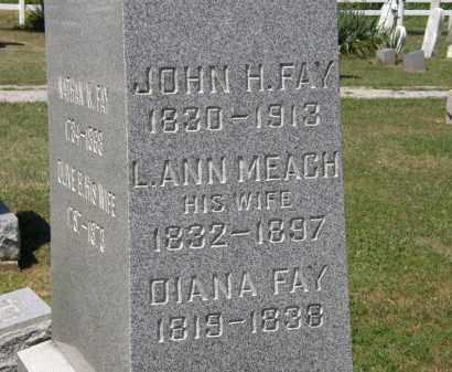 FAY, DIANA - Lorain County, Ohio | DIANA FAY - Ohio Gravestone Photos