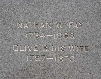 FAY, NATHAN W. - Lorain County, Ohio | NATHAN W. FAY - Ohio Gravestone Photos