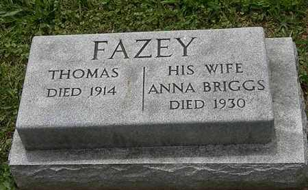 FAZEY, THOMAS - Lorain County, Ohio | THOMAS FAZEY - Ohio Gravestone Photos