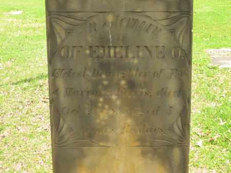 FERRIS, MARYANN - Lorain County, Ohio | MARYANN FERRIS - Ohio Gravestone Photos