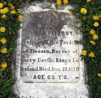 FITZROY, JAMES - Lorain County, Ohio | JAMES FITZROY - Ohio Gravestone Photos