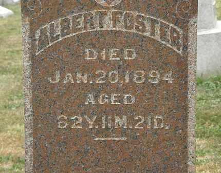 FOSTER, ALBERT - Lorain County, Ohio   ALBERT FOSTER - Ohio Gravestone Photos