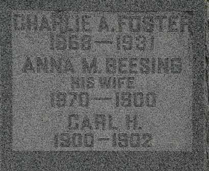 FOSTER, CHARLIE A. - Lorain County, Ohio | CHARLIE A. FOSTER - Ohio Gravestone Photos