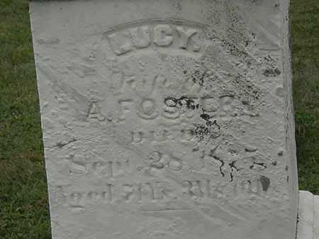 FOSTER, LUCY - Lorain County, Ohio   LUCY FOSTER - Ohio Gravestone Photos