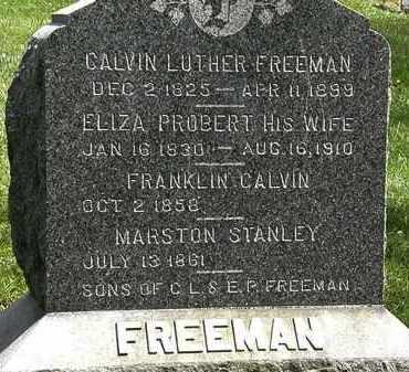 PROBERT FREEMAN, ELIZA - Lorain County, Ohio | ELIZA PROBERT FREEMAN - Ohio Gravestone Photos