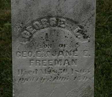 FREEMAN, GEORGE C. - Lorain County, Ohio | GEORGE C. FREEMAN - Ohio Gravestone Photos