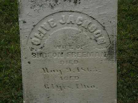 FREEMAN, OLIVE - Lorain County, Ohio   OLIVE FREEMAN - Ohio Gravestone Photos