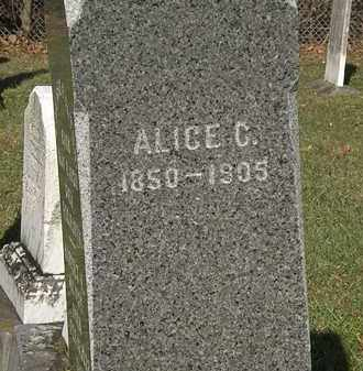 FULTON, ALICE C. - Lorain County, Ohio | ALICE C. FULTON - Ohio Gravestone Photos