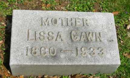 GAWN, LISSA - Lorain County, Ohio | LISSA GAWN - Ohio Gravestone Photos