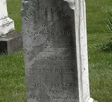 LEE GIBSON, PRISCILLA - Lorain County, Ohio | PRISCILLA LEE GIBSON - Ohio Gravestone Photos