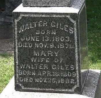 GILES, MARY - Lorain County, Ohio | MARY GILES - Ohio Gravestone Photos
