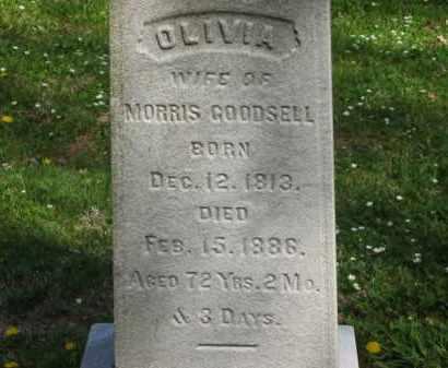 GOODSELL, OVIVIA - Lorain County, Ohio | OVIVIA GOODSELL - Ohio Gravestone Photos
