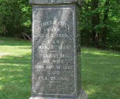 GOTT, JAMES R. - Lorain County, Ohio | JAMES R. GOTT - Ohio Gravestone Photos