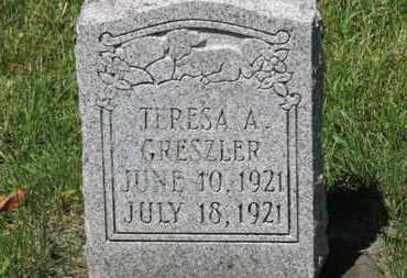 GRESZLER, TERESA A. - Lorain County, Ohio | TERESA A. GRESZLER - Ohio Gravestone Photos