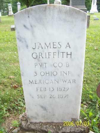 GRIFFITH, JAMES - Lorain County, Ohio | JAMES GRIFFITH - Ohio Gravestone Photos