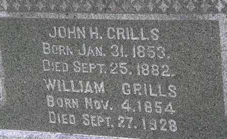 GRILLS, WILLIAM - Lorain County, Ohio | WILLIAM GRILLS - Ohio Gravestone Photos