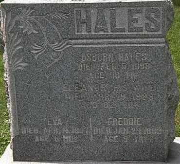 HALES, ELEANOR - Lorain County, Ohio | ELEANOR HALES - Ohio Gravestone Photos