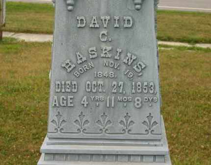 HASKINS, DAVID C. - Lorain County, Ohio | DAVID C. HASKINS - Ohio Gravestone Photos