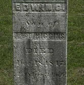 HIGGINS, EDWIN G. - Lorain County, Ohio | EDWIN G. HIGGINS - Ohio Gravestone Photos