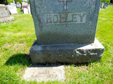 COLEMAN HOLLEY, MARY - Lorain County, Ohio | MARY COLEMAN HOLLEY - Ohio Gravestone Photos