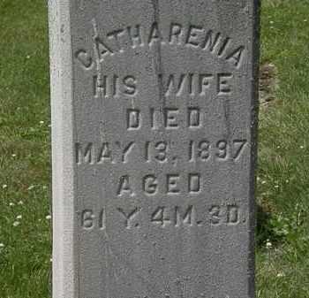 HOLZHAUER, CATHARENIA - Lorain County, Ohio   CATHARENIA HOLZHAUER - Ohio Gravestone Photos