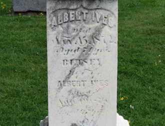 IVES, BETSEY - Lorain County, Ohio | BETSEY IVES - Ohio Gravestone Photos