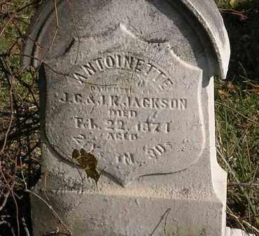 JACKSON, ANTOINETTE - Lorain County, Ohio | ANTOINETTE JACKSON - Ohio Gravestone Photos