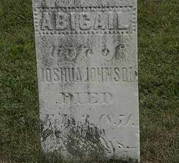 JOHNSON, ABIGAIL - Lorain County, Ohio | ABIGAIL JOHNSON - Ohio Gravestone Photos