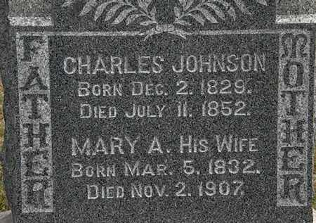 JOHNSON, CHARLES - Lorain County, Ohio | CHARLES JOHNSON - Ohio Gravestone Photos