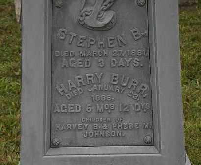 JOHNSON, PHEBE M. - Lorain County, Ohio | PHEBE M. JOHNSON - Ohio Gravestone Photos