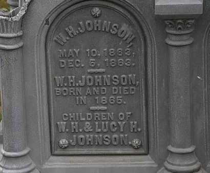 JOHNSON, W.H. - Lorain County, Ohio   W.H. JOHNSON - Ohio Gravestone Photos