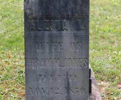 JONES, ALZINA - Lorain County, Ohio | ALZINA JONES - Ohio Gravestone Photos