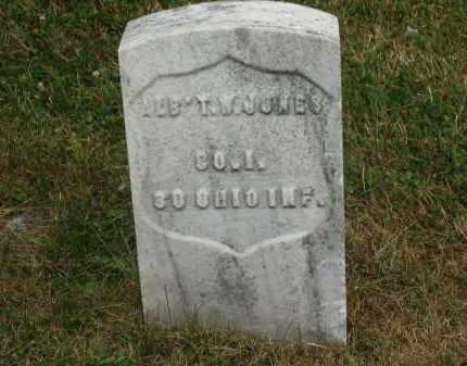 JONES, ALB'T W - Lorain County, Ohio | ALB'T W JONES - Ohio Gravestone Photos