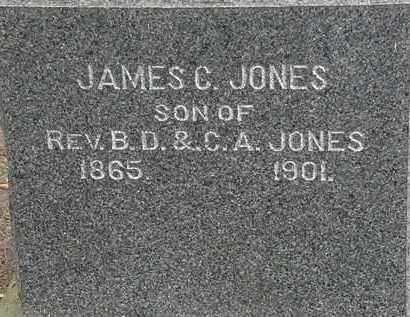 JONES, JAMES C. - Lorain County, Ohio | JAMES C. JONES - Ohio Gravestone Photos