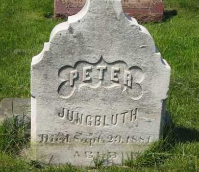JUNGBLUTH, PETER - Lorain County, Ohio | PETER JUNGBLUTH - Ohio Gravestone Photos