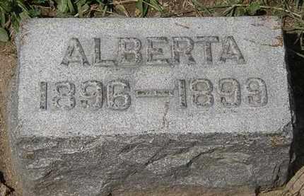 KIRK, ALBERTA - Lorain County, Ohio   ALBERTA KIRK - Ohio Gravestone Photos