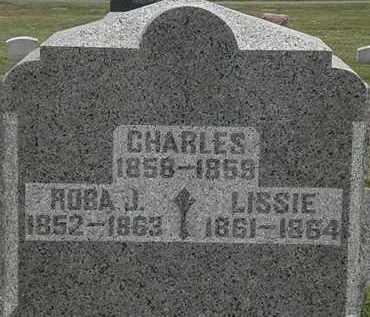 KNOWLES, CHARLES - Lorain County, Ohio | CHARLES KNOWLES - Ohio Gravestone Photos